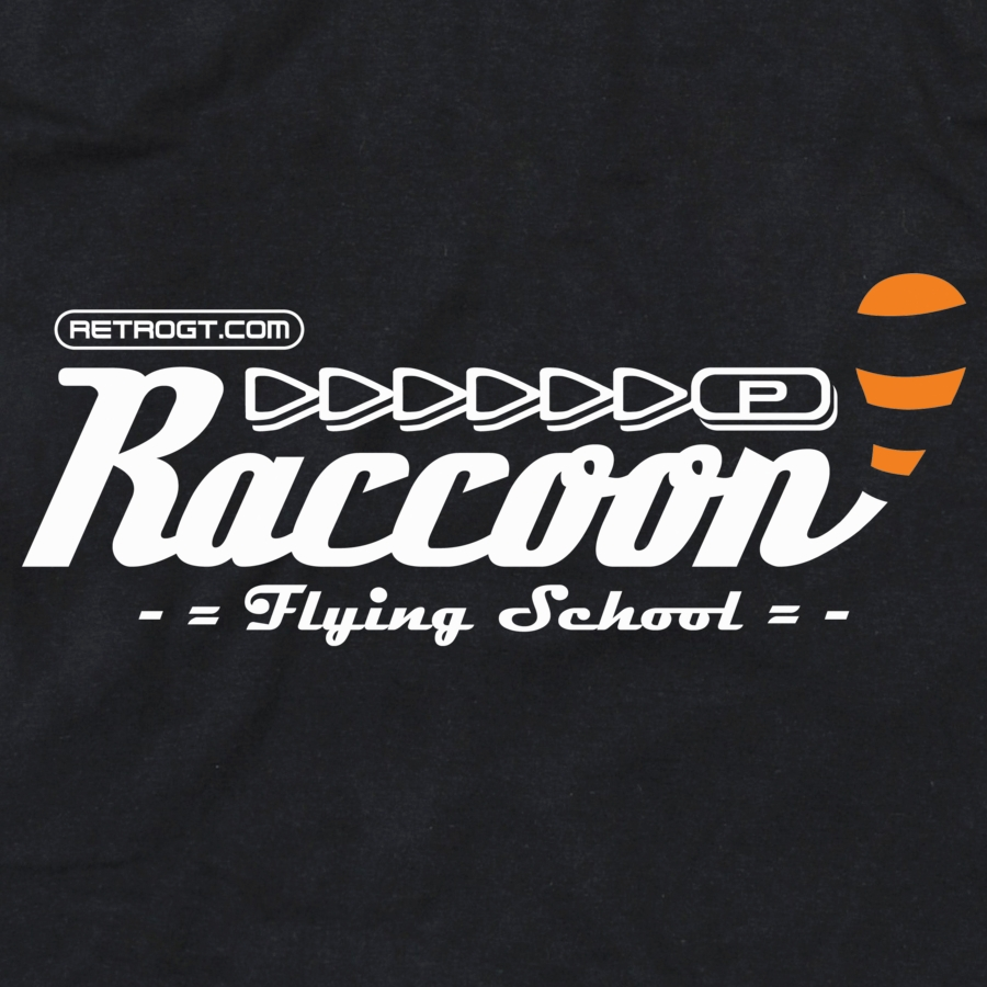 Alternative photo: Raccoon Flying School Girls T-Shirt